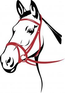 Pferdekopf in Farbe